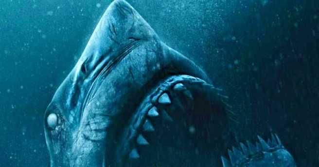 blind shark